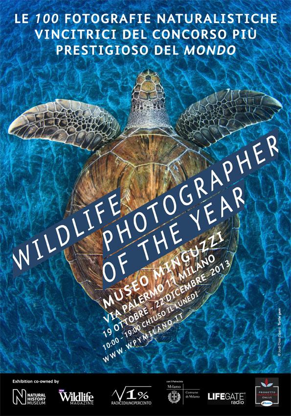 """Wildlife Photographer of the Year 2013"" dal 19 ottobre al 22 dicembre 2013 a Milano"