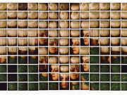 """""""Photofestival 2015"""" a Milano dal 20 aprile al 20 giugno"""